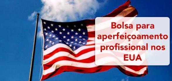 Bolsa para aperfeiçoamente profissional nos EUA. Foto: Reprodução Mvcblog