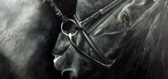 La contrainte vue par Renaud H, le peintre des chevaux
