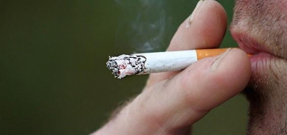 Sigarette, via al divieto di fumare nei luoghi adiacenti al verde pubblico.