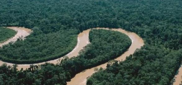 De acordo como as autoridades rio da Amazonia peruana está contaminado com mercúrio