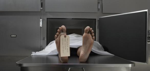 Teoria căruia în locul lui Condrea era un mort din frigider