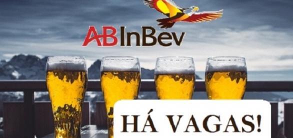 Foto: AB InBev - Confira quais são os cargos na multinacional!