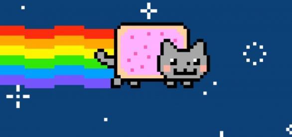 Ryan Cat (Flickr, https://www.flickr.com/photos/rbulmahn/5714362160/)