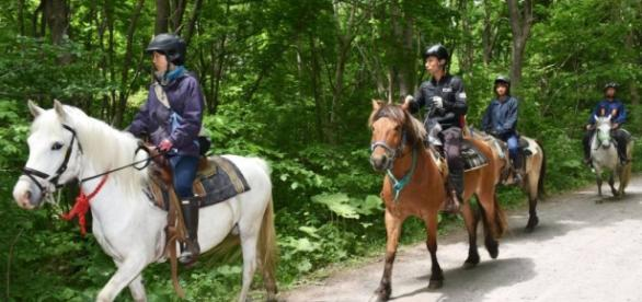 Terceiro dia de busca pelo menino desaparecido nas montanhas de Hokkaido