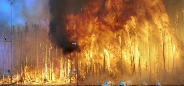 Las llamas, que consumen vorazmente la vegetación, alcanzan ya la zona de producción petrolífera