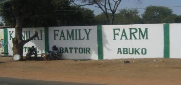Outside the KFF central abattoir in Abuko, The Gambia / Photo via Diasporium News