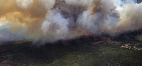 Continua el gran incendio arrasando bosques
