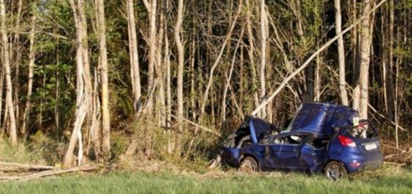 O carro bateu frontalmente contra uma árvore