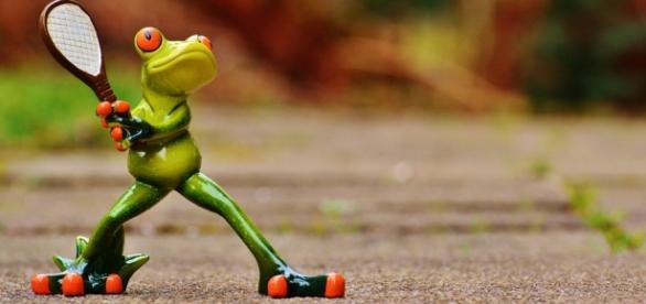 Il faut être une grenouille pour jouer à Roland Garros !