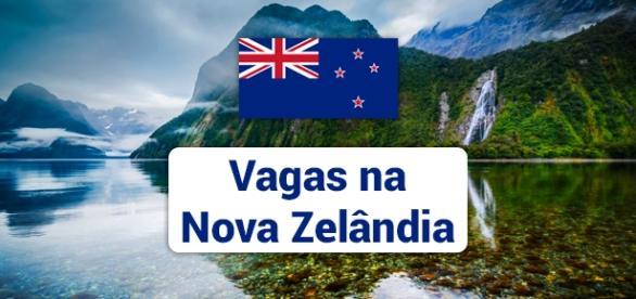 Mais de 3 mil vagas abertas na Nova Zelândia.