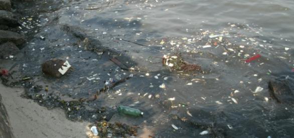 Despoluição da Baía de Guanabara está londe de acontecer