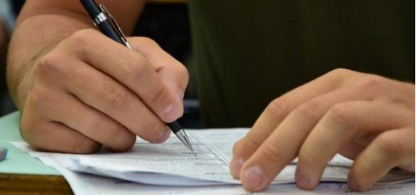 Prefeituras abrem concursos com cargos na área ambiental