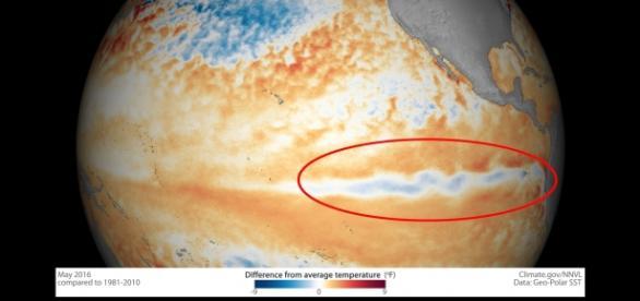 Área em destaque indica resfriamento das águas. Crédito: NOAA