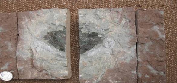 Composição química da rocha é diferente de todos os astros já detectados