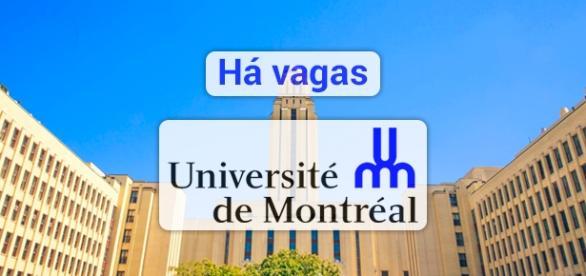 Universidade de Montreal está contratando - Foto: Reprodução Amrm-montreal