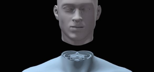 Could head transplants become the new norm?