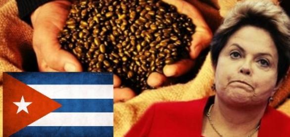 Dilma doou muito feijão para Cuba, diz site
