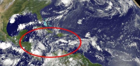 As características do mar do Caribe fazem com que zumbido ocorra apenas naquela região