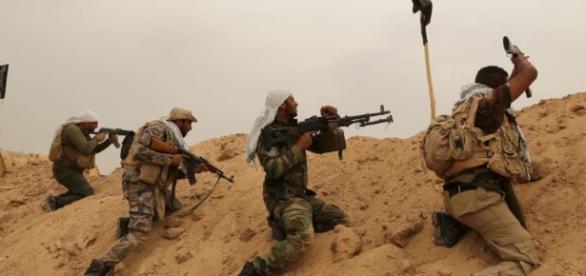 El ejército iraquí libera la ciudad de Falluyah