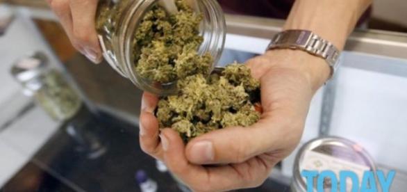 Il 25 Luglio la Camera discuterà la proposta di legge per la legalizzazione della cannabis in Italia