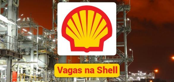 Shell tem 130 vagas de trabalho - Foto: Reprodução Shell