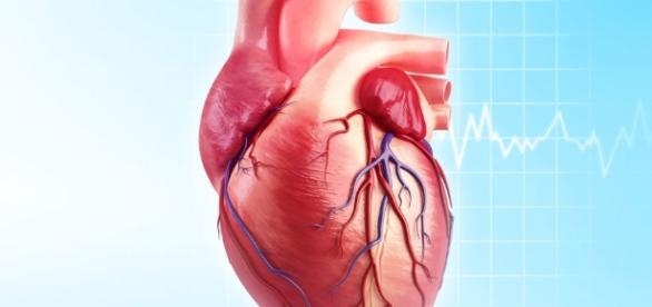Heart disease - netdoctor.co.uk