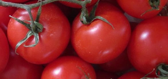 Pomidor jest najbogatszym źródłem likopenu