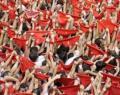 San Fermín: ésta no es mi fiesta