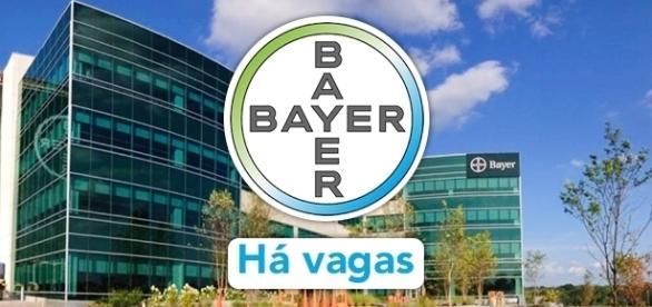 Bayer está contratando em todo o mundo - Foto Reprodução Kainc
