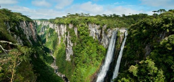 A bela Cambará e os Canyons do Itaimbézinho (Foto: Renato Grimm)