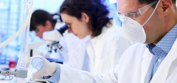 Fiocruz está selecionando especialistas com doutorado