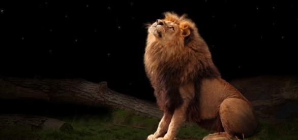 Luna nouă în Leu va aduce multe schimbări în viața oamenilor