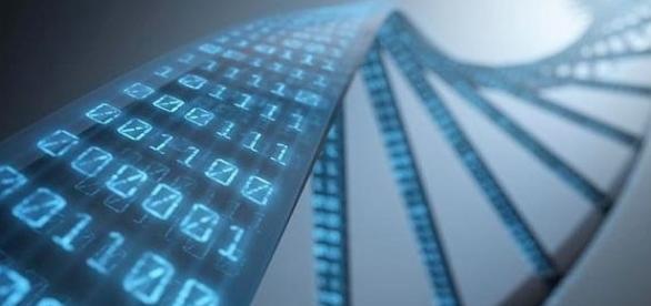 Técnica consiste em alterar o DNA (The Telegraph)