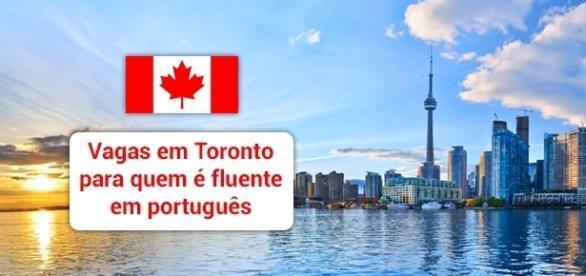 Toronto tem oportunidades para fluentes em português - Foto: Reprodução Prestesavoar