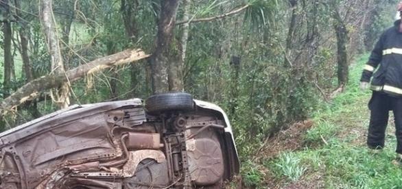 Carro bateu em uma árvore às margens da rodovia