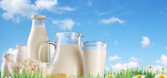 Jak wybrać zdrowe przetwory mleczne?