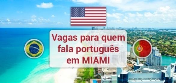 Miami tem vagas para profissionais fluentes em português - Foto: Reprodução Shauntmax30