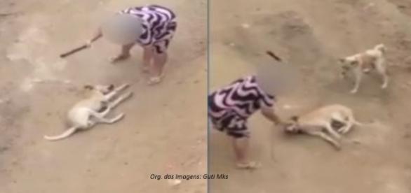 Crime foi filmado por moradores e a agressora responderá criminalmente