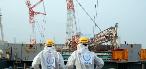 Two IAEA workers at the Fukushima site in 2013 / Photo via Greg Webb, IAEA