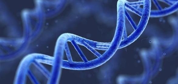 Molécule d'ADN - sputniknews.com