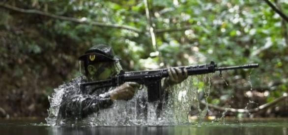 O poder das Forças Armadas Brasileiras