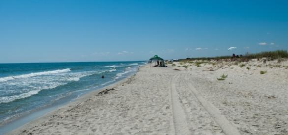 Oamenii se expun foarte multor riscuri când merg la plajă