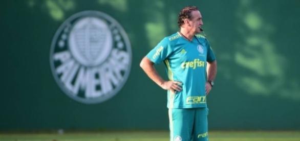 Cuca comanda treino no Palmeiras