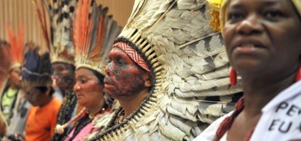 PEC reduz poder da Funai na demarcação de terras indígenas | Meio ... - com.br