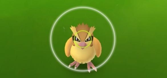 Pokémon GO - Melhore seu nível sem quebrar as regras