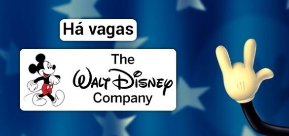 Vagas para trabalhar na Disney. Foto: Reprodução Wallpaperscraft