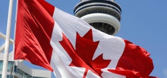 Canadá planeja triplicar o número de imigrantes para estudar e trablhar por lá
