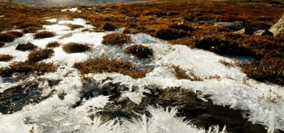 Why This New Study On Arctic Permafrost Is So Scary | ThinkProgress - thinkprogress.org