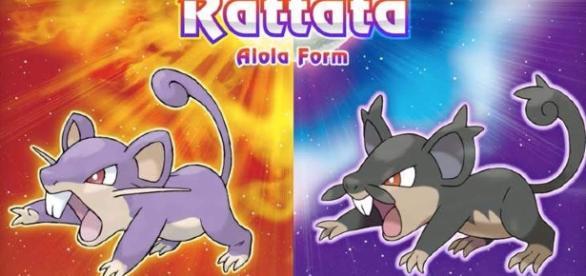 Nueva Alola Form de Rattata en Sun/Moon.