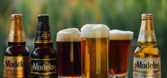Aprende a catar cerveza como todo un experto | Sabores Modelo - saboresmodelo.com